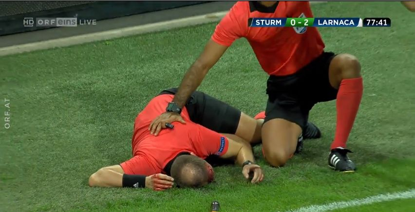 Referee hit by fan